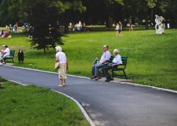 Die Rürup-Rente